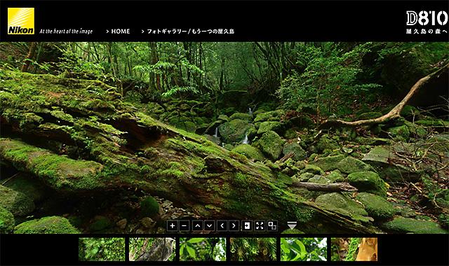 D810スペシャルコンテンツ「D810 屋久島の森へ」撮影秘話。