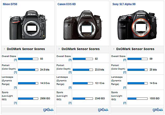 D750 vs D610 vs D810 vs EOS 6D vs α99!センサー対決。