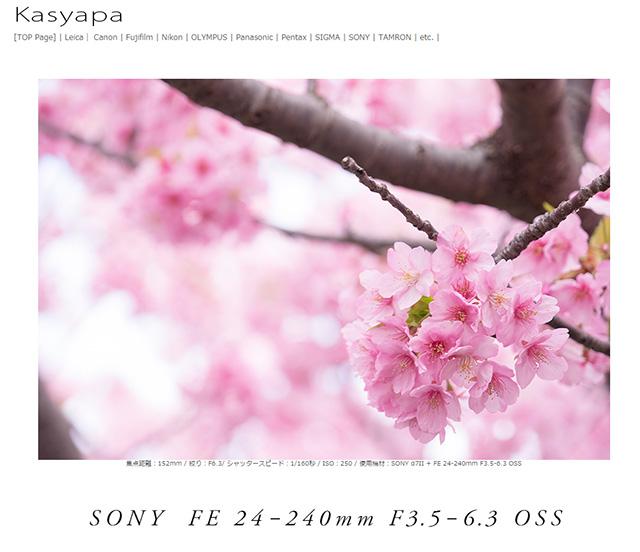 ソニー  FE 24-240mm F3.5-6.3 OSS レビュー「高倍率ズームのイメージを変えてくれるほど素晴らしい性能を持った一本。」
