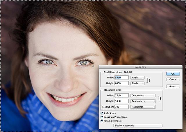 ツァイス Batis 1.8/85 の公式サンプル画像が、5600万画素以上のカメラで撮影された模様。