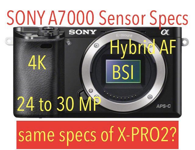 ソニーα7000のセンサーは裏面照射型で3000万画素になる!?