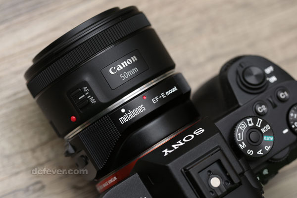 ソニー α7R IIレビュー「Sonnar T* FE 55mm F1.8 ZA vs EF50mm F1.8 STM(Metabones EF-E Ver4) AFスピード対決」