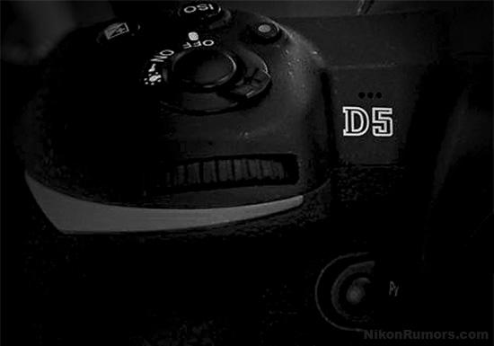 ニコンD5は、ダブルXQDとダブルCFの2バージョンになる!?