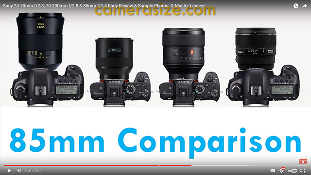 Otus 1.4/85 vs Batis 1.8/85 vs FE 85mm F1.4 GM vs SIGMA 85mm F1.4 EX DG HSM