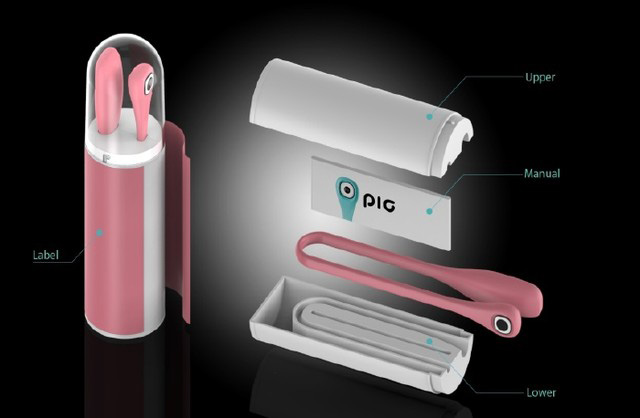 ポリイミド樹脂で自由な形で使えるアクションカメラ「PIC」