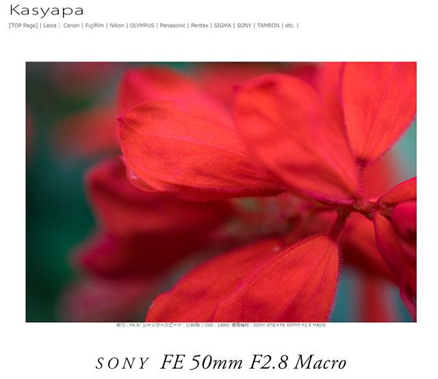 ソニーFE 50mm F2.8 Macro