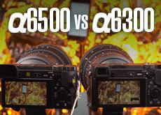 α6500 vs α6300