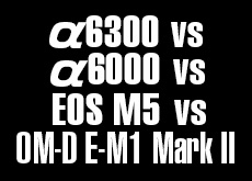 OM-D E-M1 Mark II vs EOS M5 vs α6300 vs α6000。高感度対決。