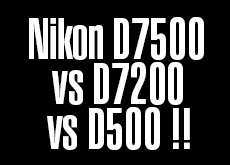 ニコンD7200 vs D7500 vs D500。高感度対決。