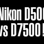 D500 vs D7500「スペックの数値的にはD500のほうが勝ってはいるが使ってみた印象ではほぼ互角。」