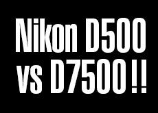 D500 vs D7500