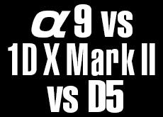 α9 vs EOS-1DX MarkII vs D5。3大メーカー頂上対決。