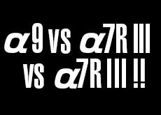 α9 vs α7R III vs α7 III