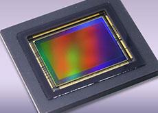 キヤノンのフルサイズミラーレスに搭載される3040万画素センサーは、5D Mark IVとは全く異なるセンサーになる!?発表はが9月の第2週!?