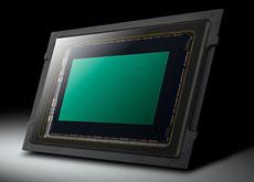 パナソニック「LUMIX GH5S」は、独自で調整を行ったソニー製センサーが搭載されている模様。