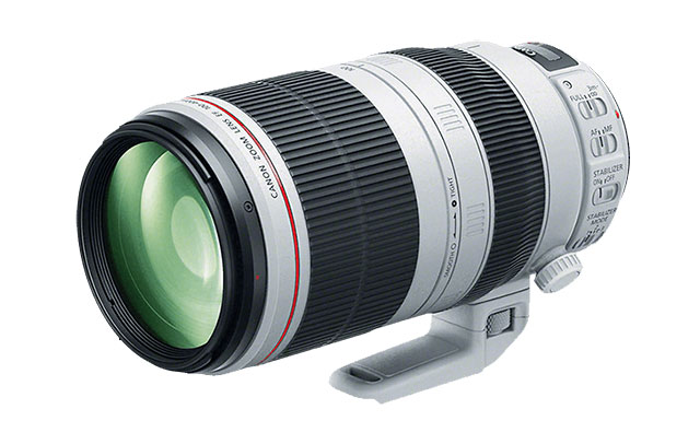 RF200-500mm F4.5-5.6L IS USM