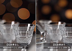 キヤノン「RF85mm F1.2 L USM DS」vs「RF85mm F1.2 L USM」ボケ対決。