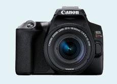 Z世代の女性の「欲しいカメラ」トップは「一眼レフカメラ」、2位は「チェキ」の模様。