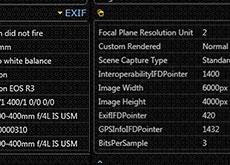キヤノン「EOS R3」の画素数は2400万画素で確定!?